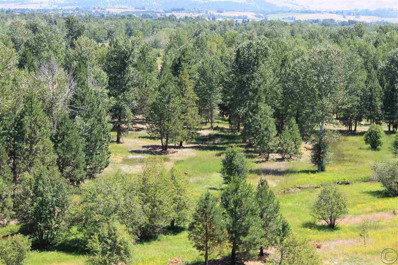 Additional photo for property listing at 206 Westside Road  Hamilton, Montana 59840 United States