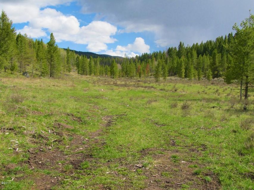 Additional photo for property listing at Moose Lake Road Moose Lake Road Philipsburg, Montana 59858 United States