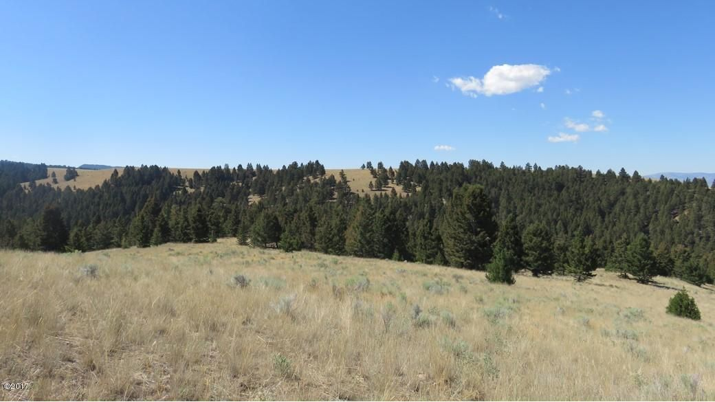 Additional photo for property listing at Perkins Gulch Ranch  Warm Springs, Montana 59756 United States