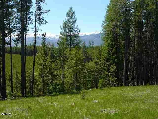 Additional photo for property listing at Stoner Lake Road Stoner Lake Road Condon, Montana 59826 United States
