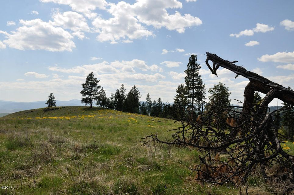 Additional photo for property listing at Browns Meadow Road  Niarada, Montana 59845 United States
