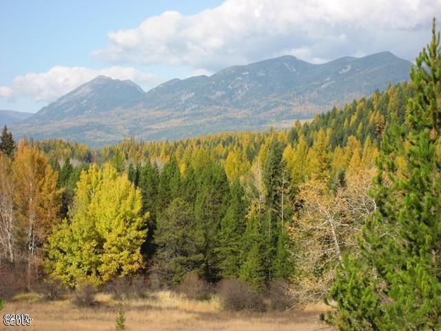 Land for Sale at 188 South Meadow Creek Road Olney, Montana 59927 United States