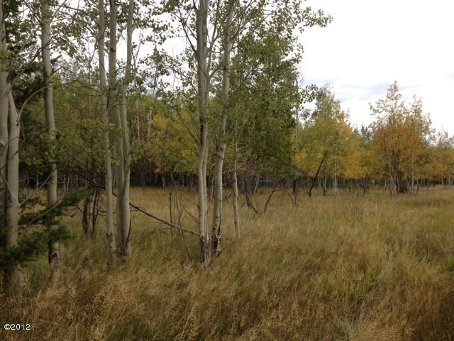 Additional photo for property listing at 340 Holt Drive  Bigfork, Montana 59911 United States