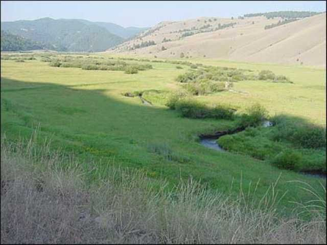 Land for Sale at Triple Creek Ranch Philipsburg, Montana 59858 United States