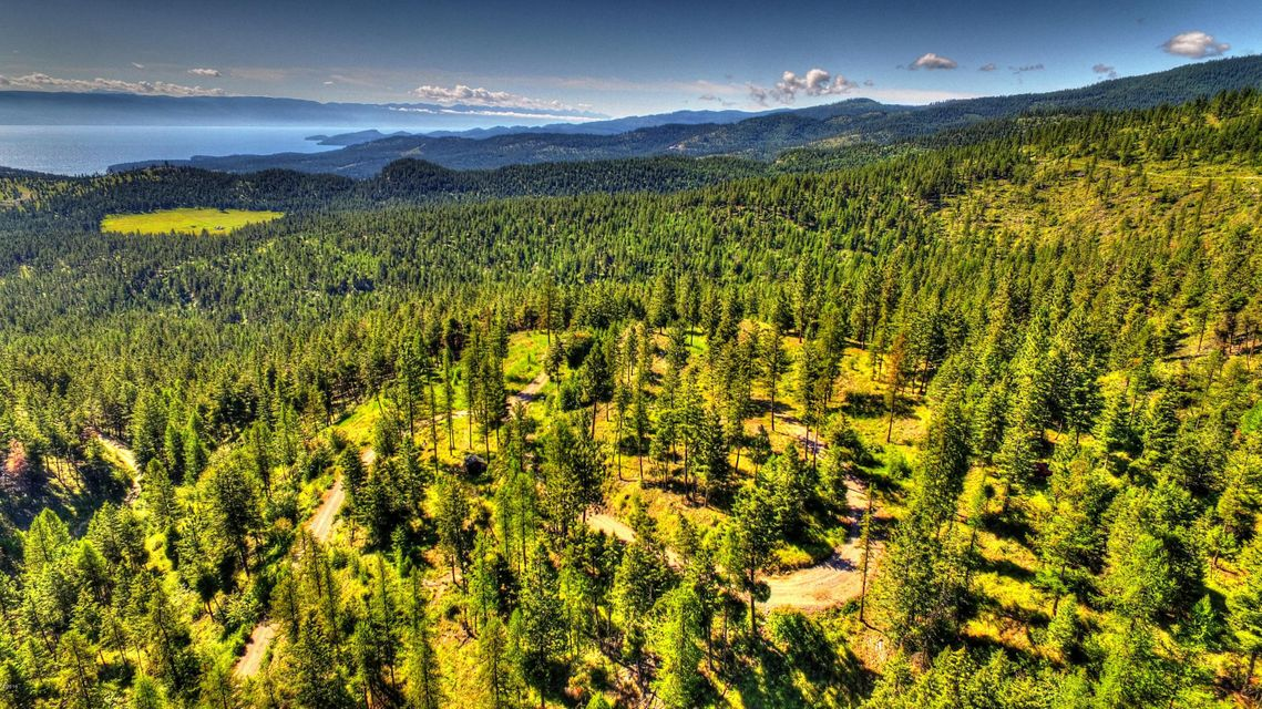 Land for Sale at 475 Buffalo Lane Somers, Montana 59932 United States