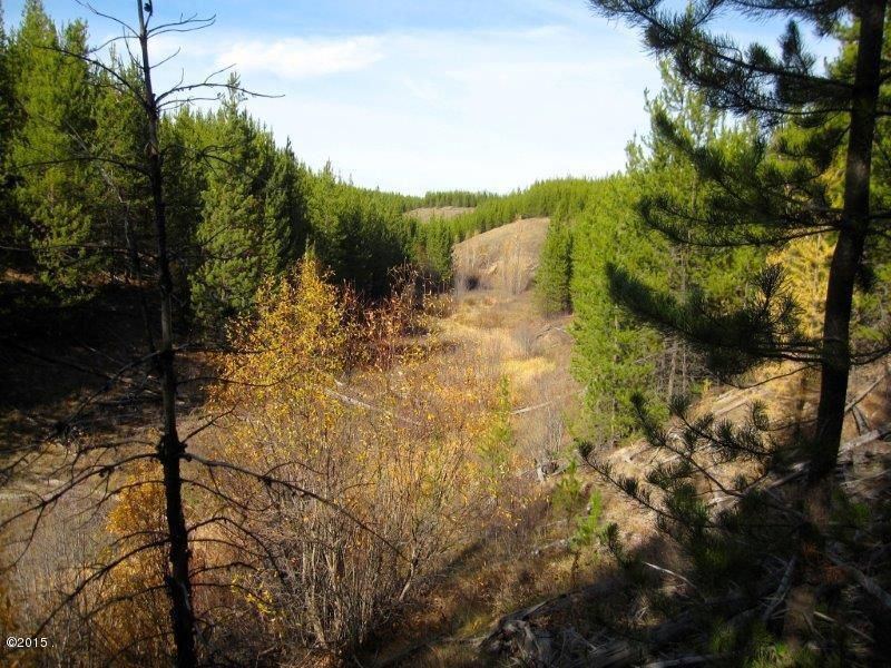Additional photo for property listing at 10975 North Fork Road  Polebridge, Montana 59928 United States