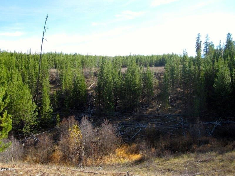 Additional photo for property listing at 10975 North Fork Road 10975 North Fork Road Polebridge, Montana 59928 United States