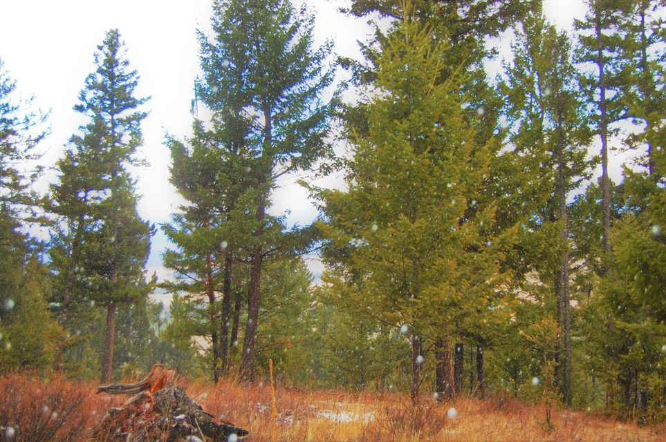 Additional photo for property listing at Indian Creek Road  Eureka, Montana 59917 United States