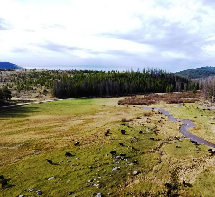 Additional photo for property listing at Willow Creek Road Willow Creek Road Philipsburg, Montana 59858 United States