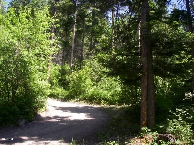 Additional photo for property listing at 21331 East Shore Route 21331 East Shore Route Bigfork, Montana 59911 United States