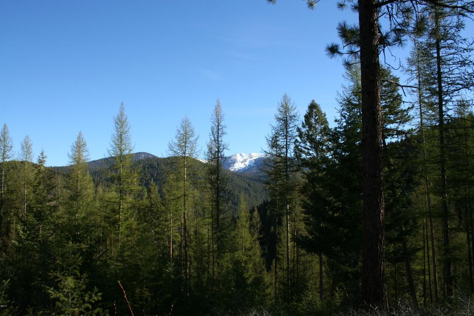 Additional photo for property listing at 350 Colorado Gulch Road  Missoula, Montana 59808 United States