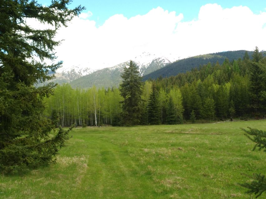 Price reduced on this beautiful property close to Eureka !Seller is motivated,Bring Offers ! 180 degree view of Whitefish Mountains. Build your home in the nice stand of trees facing the mountains. This building spot is awesome, with mountain views, green meadows and in a quiet area yet close to Glen Lake and Eureka !Septic and well are approved.