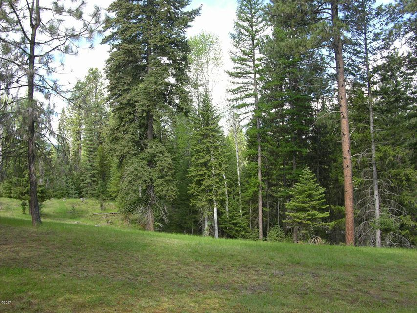 Additional photo for property listing at 1 Ridge Lane  Trout Creek, Montana 59874 United States