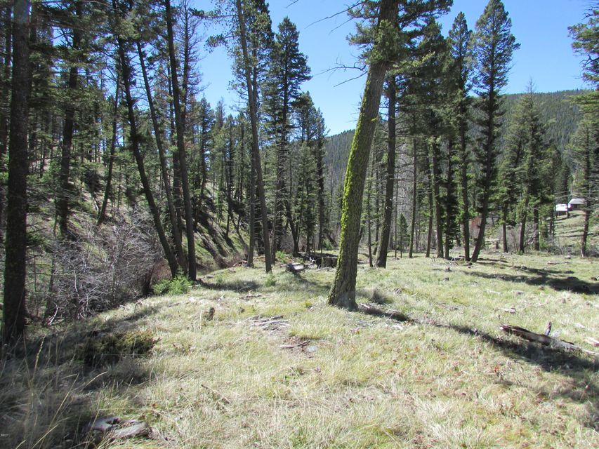 Additional photo for property listing at 12967 Flesher Acres Road 12967 Flesher Acres Road Canyon Creek, Montana 59633 United States