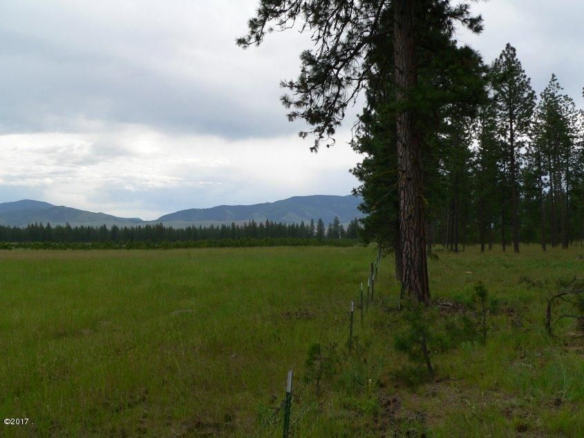 Additional photo for property listing at 421 River Road  Plains, Montana 59859 United States