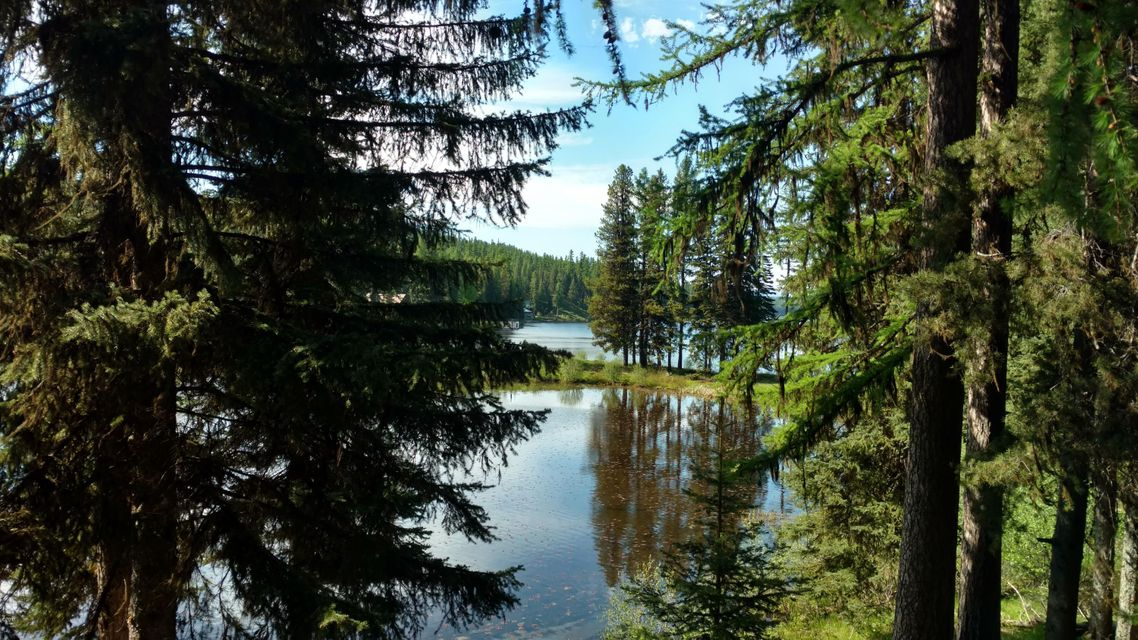 Additional photo for property listing at 702 Beargrass Lane  Seeley Lake, Montana 59868 United States