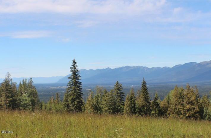 Additional photo for property listing at Bug Creek Road  Bigfork, Montana 59911 United States