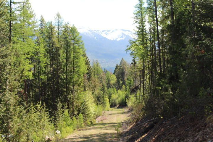 Additional photo for property listing at Bug Creek Road Bug Creek Road Bigfork, Montana 59911 United States
