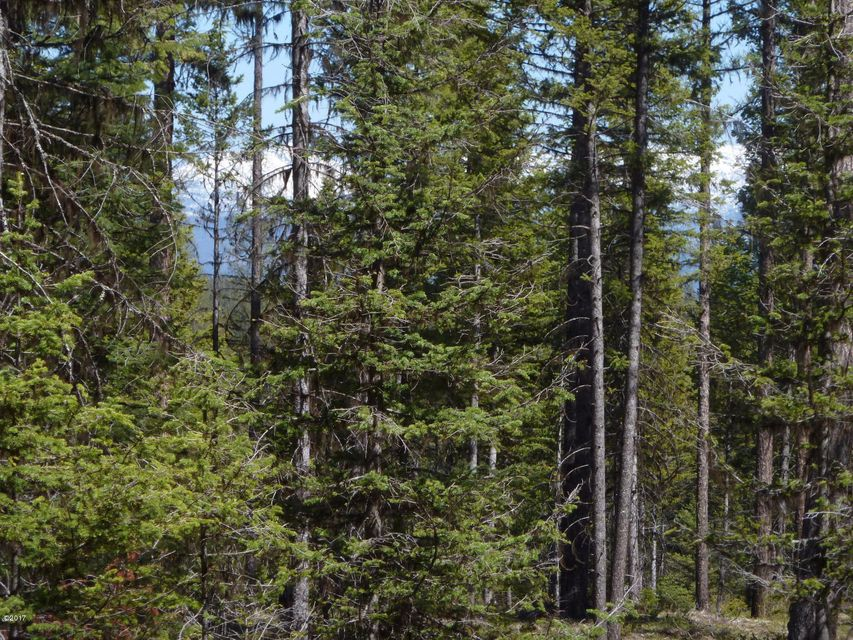 Additional photo for property listing at Star Meadows Road Star Meadows Road Whitefish, Montana 59937 United States