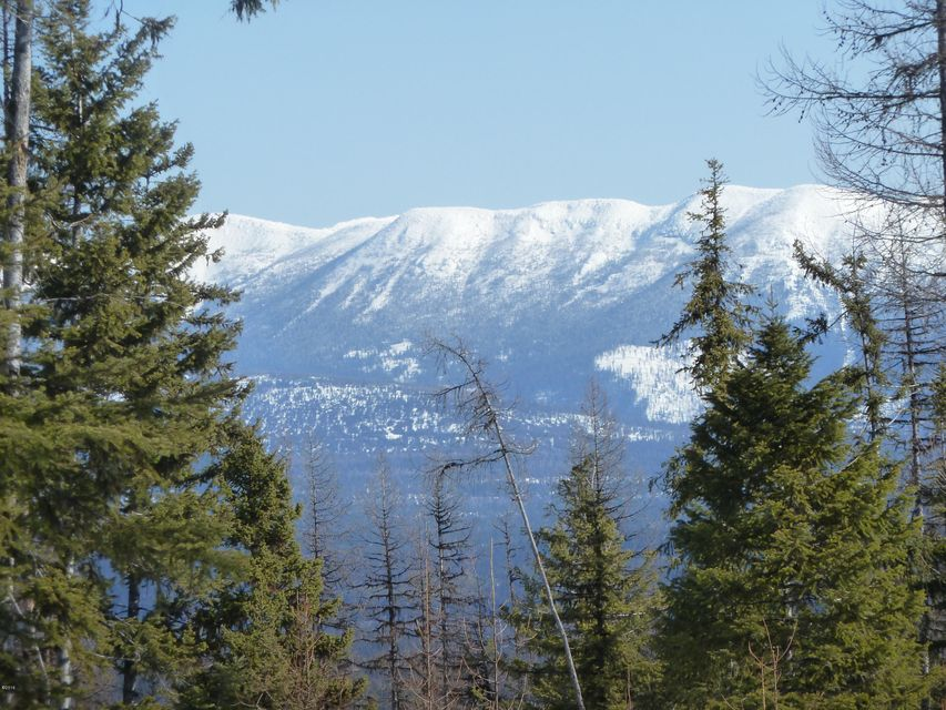 Land for Sale at Tr1 Hill Meadows Road Tr1 Hill Meadows Road Whitefish, Montana 59937 United States