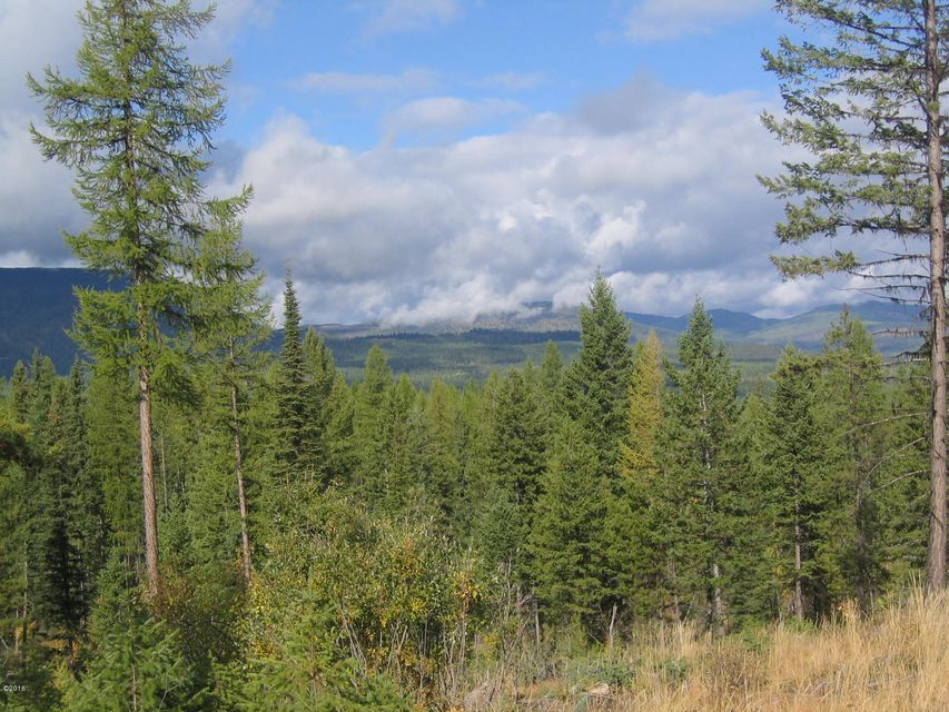 Additional photo for property listing at Tr1 Hill Meadows Road Tr1 Hill Meadows Road Whitefish, Montana 59937 United States
