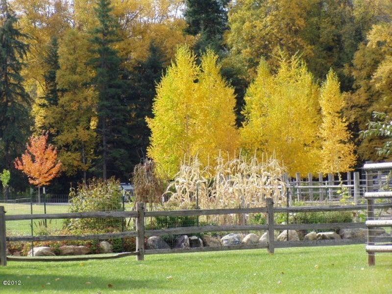 405 Delrey Road,Whitefish,Montana 59937,3 Bedrooms Bedrooms,4 BathroomsBathrooms,Residential,Delrey,21707116