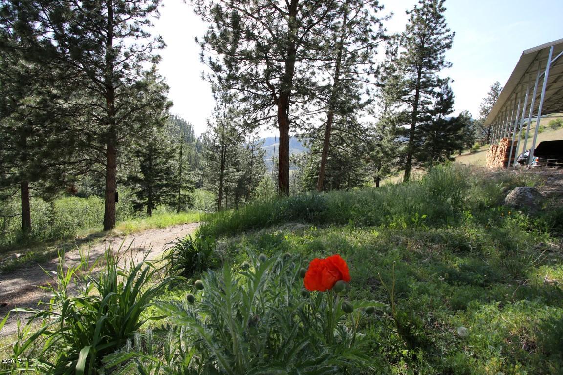 31  45 Lower Lamaraux Creek Road (Medium