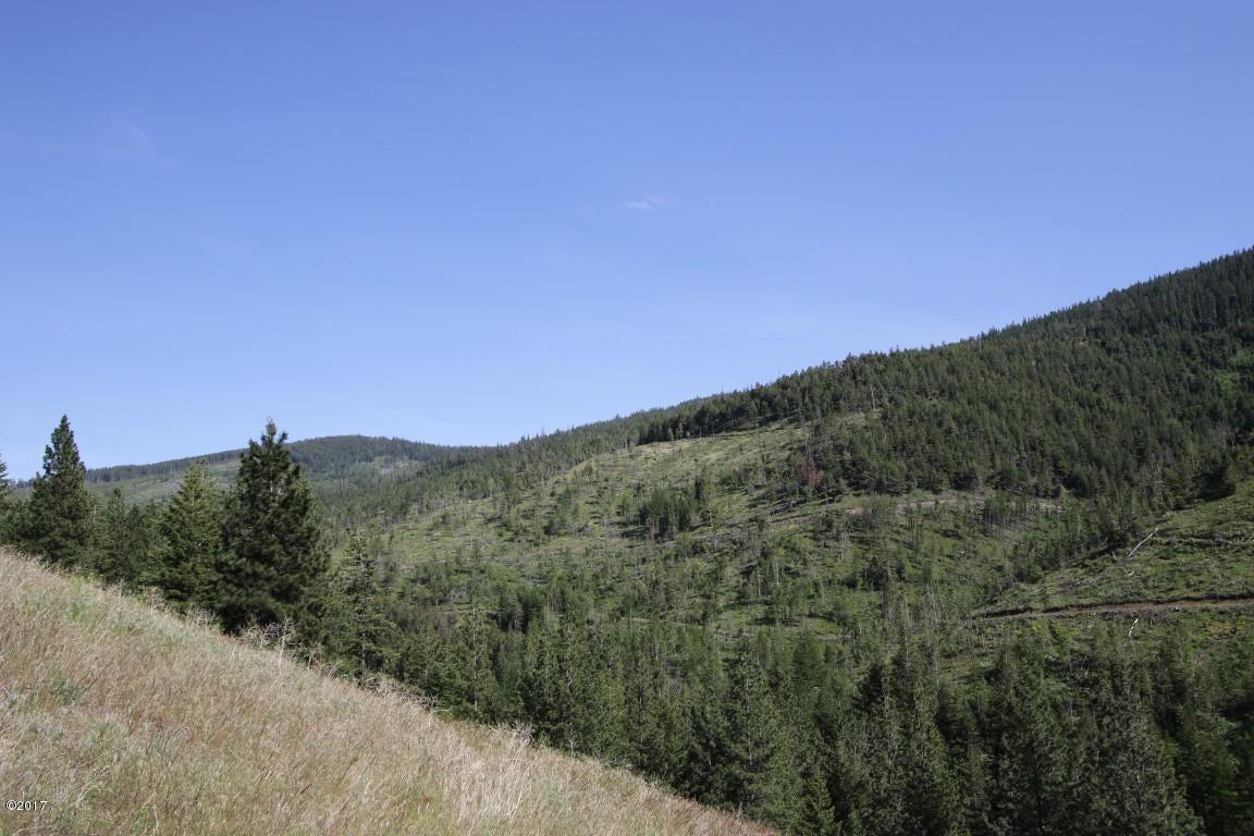 45  45 Lower Lamaraux Creek Road (Medium