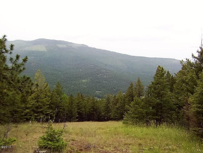 Land for Sale at Browns Meadow Road Browns Meadow Road Kila, Montana 59920 United States