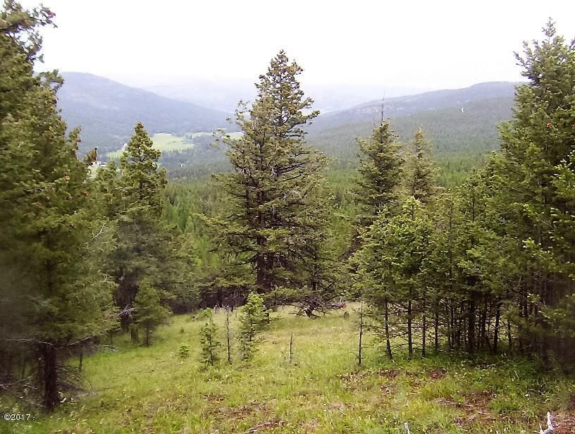 Additional photo for property listing at Browns Meadow Road Browns Meadow Road Kila, Montana 59920 United States