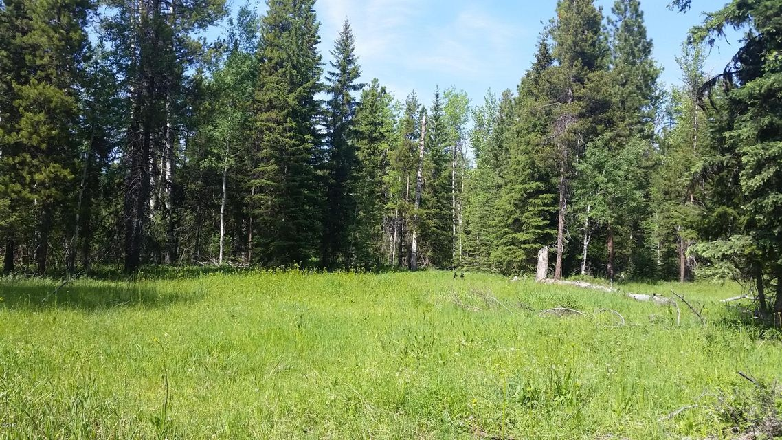Additional photo for property listing at Highway 83 Highway 83 Condon, Montana 59826 United States