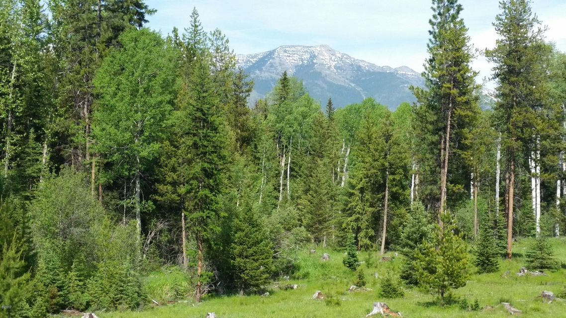 Additional photo for property listing at Highway 83  Condon, Montana 59826 United States