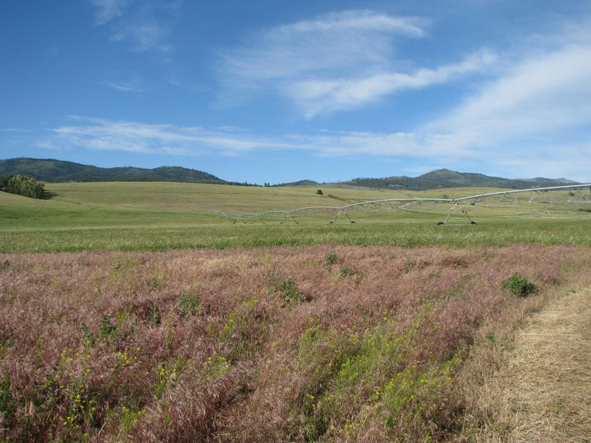 Additional photo for property listing at Eight Mile Creek Road  Florence, Montana 59833 United States