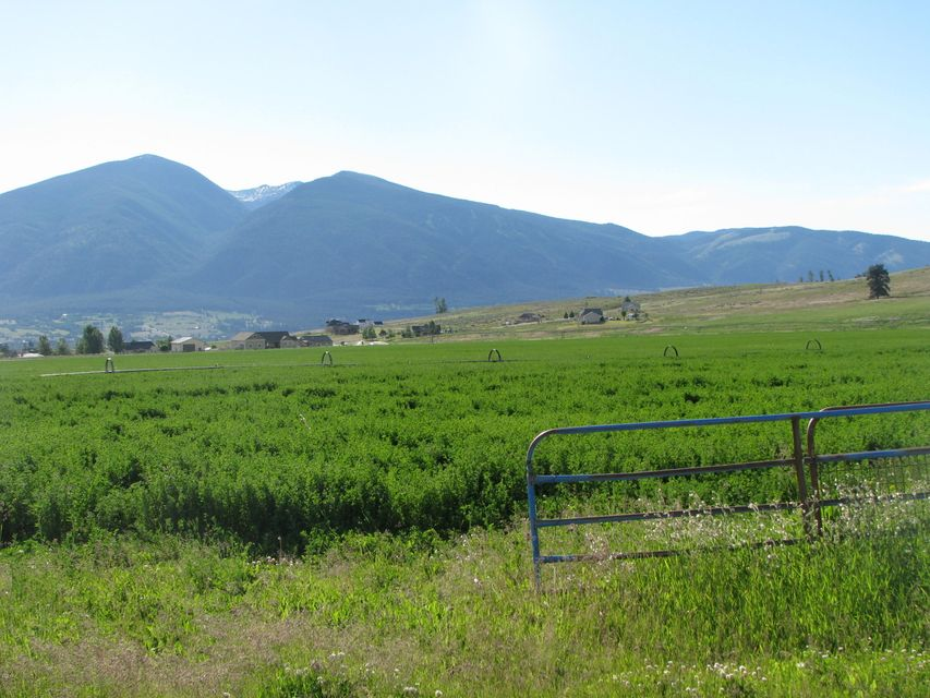 Land for Sale at Eight Mile Creek Road Eight Mile Creek Road Florence, Montana 59833 United States