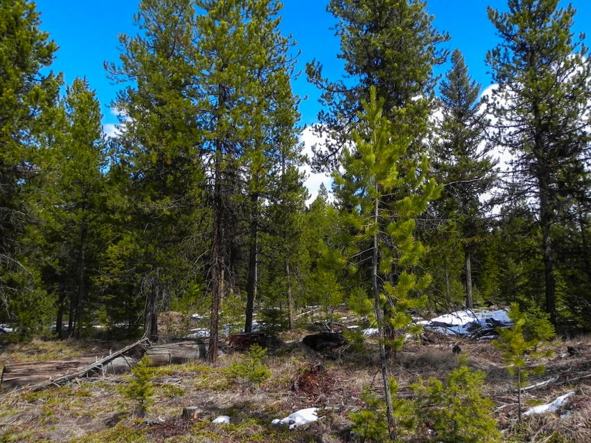 Additional photo for property listing at Rainbow Lake Road Rainbow Lake Road Libby, Montana 59923 United States
