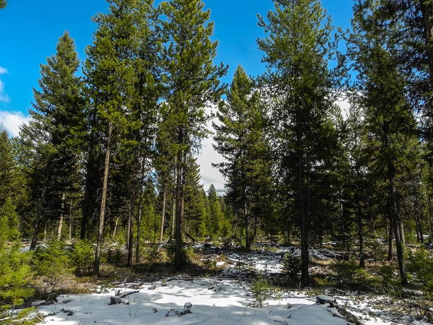 Additional photo for property listing at Rainbow Lake Road  Libby, Montana 59923 United States