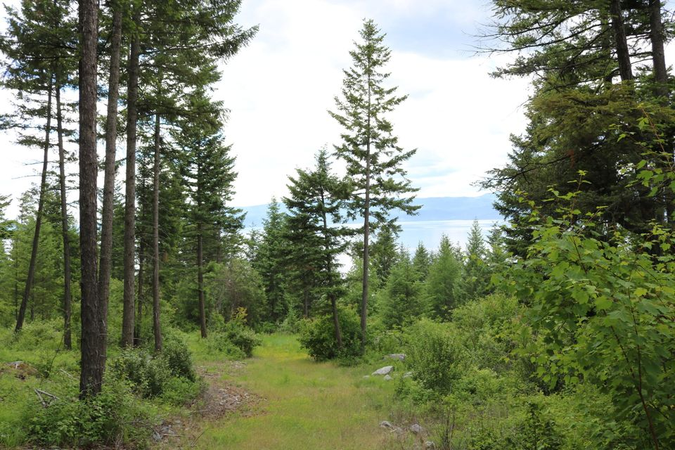 Additional photo for property listing at 16169 Sunset Heights Drive  Bigfork, Montana 59911 United States