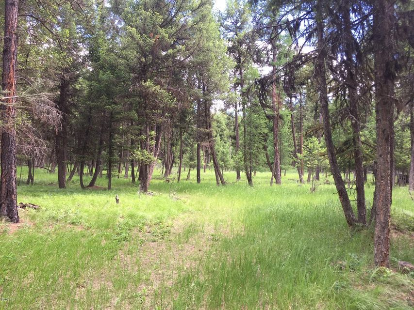 Additional photo for property listing at Grave Creek Road Grave Creek Road Eureka, Montana 59917 United States