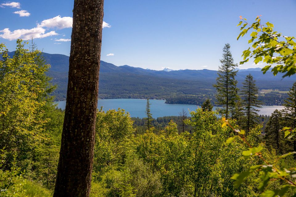 Additional photo for property listing at 2325 Wolf Tail Pines Road  Whitefish, Montana 59937 United States