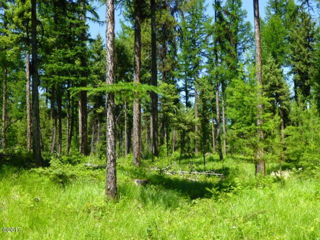 Land for Sale at 225-255 Chinook Lake Road 225-255 Chinook Lake Road Whitefish, Montana 59937 United States
