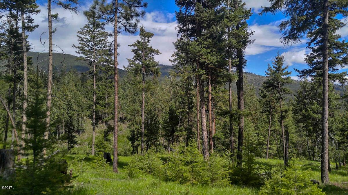 Montana land, remote land, off-grid Montana