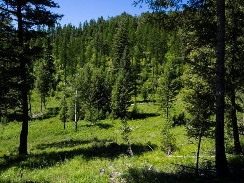 Land for Sale at Patrick Creek Road Patrick Creek Road Kalispell, Montana 59901 United States