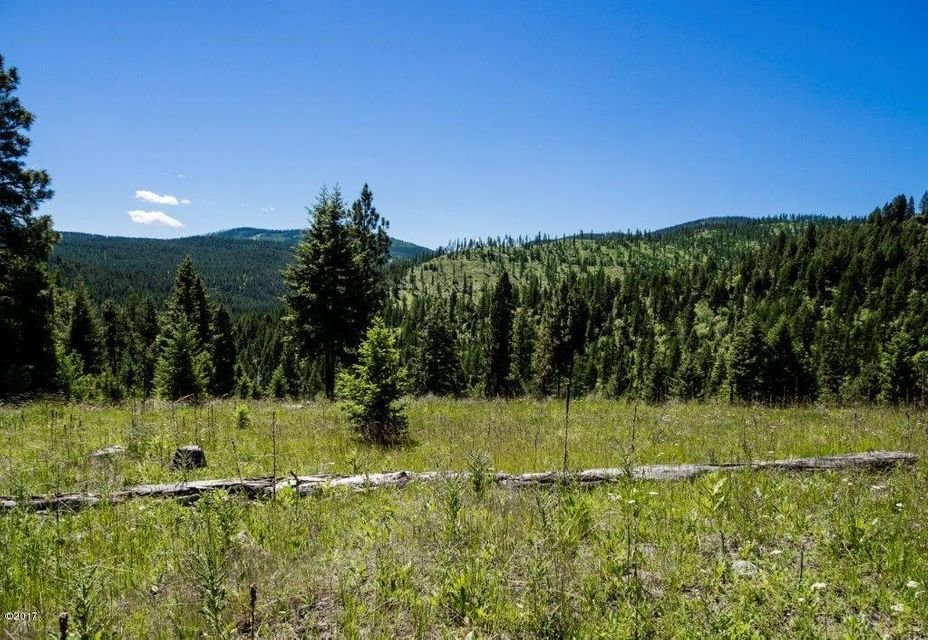 Additional photo for property listing at Patrick Creek Road Patrick Creek Road Kalispell, Montana 59901 United States