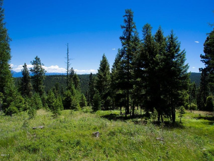 Additional photo for property listing at Nhn  Patrick Creek Road Nhn  Patrick Creek Road Kalispell, Montana,59901 Estados Unidos