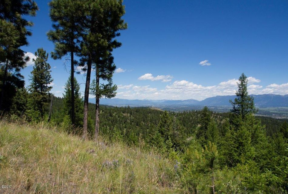 Additional photo for property listing at Nhn  Patrick Creek Road  Kalispell, Montana,59901 Stati Uniti