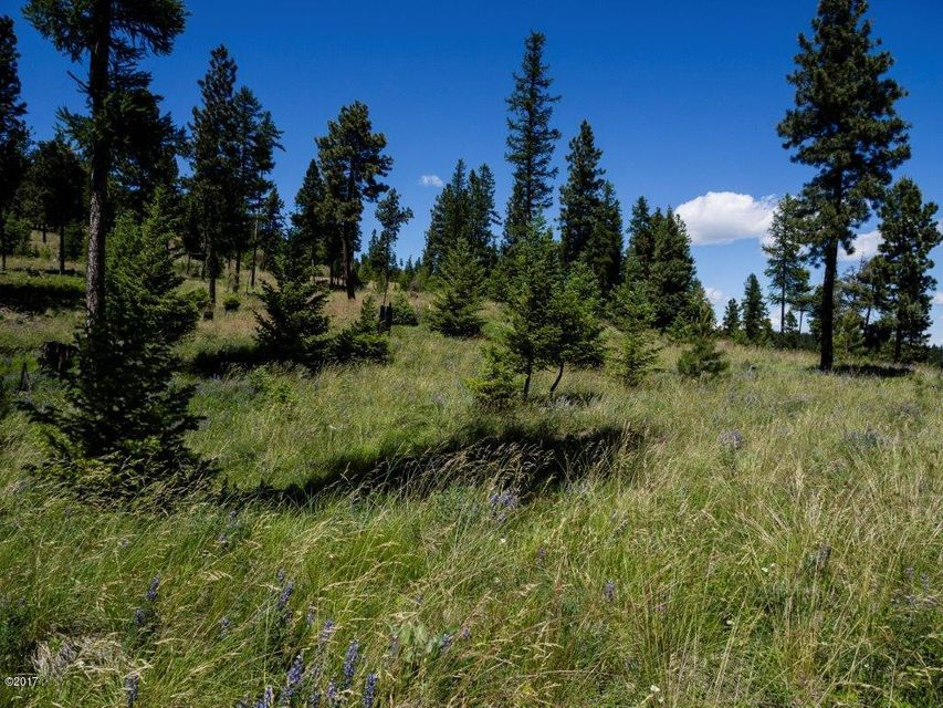Additional photo for property listing at Nhn  Patrick Creek Road  Kalispell, Montana,59901 Verenigde Staten