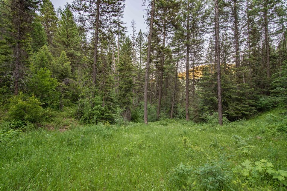 Additional photo for property listing at 11433 Bench Road  Missoula, Montana 59808 United States