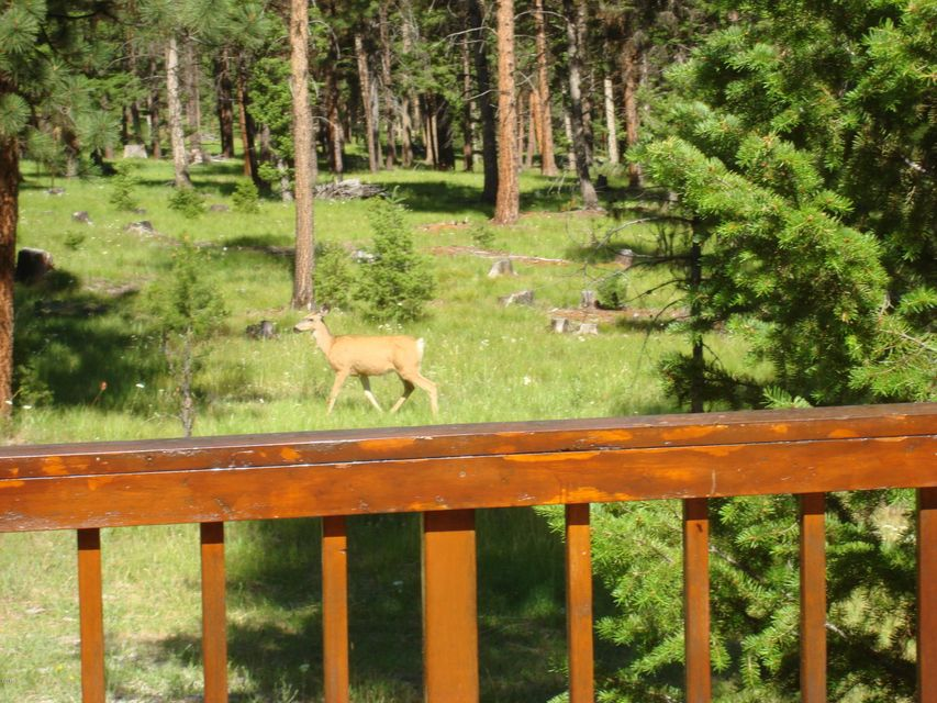 Additional photo for property listing at 9188 Lookout Mountain Road  Darby, Montana 59829 United States