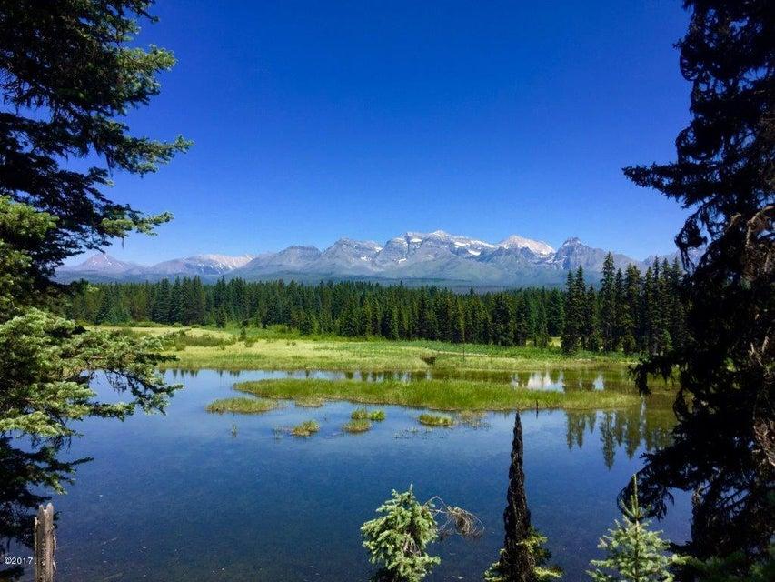 Land for Sale at North Fork Road Polebridge, Montana 59928 United States