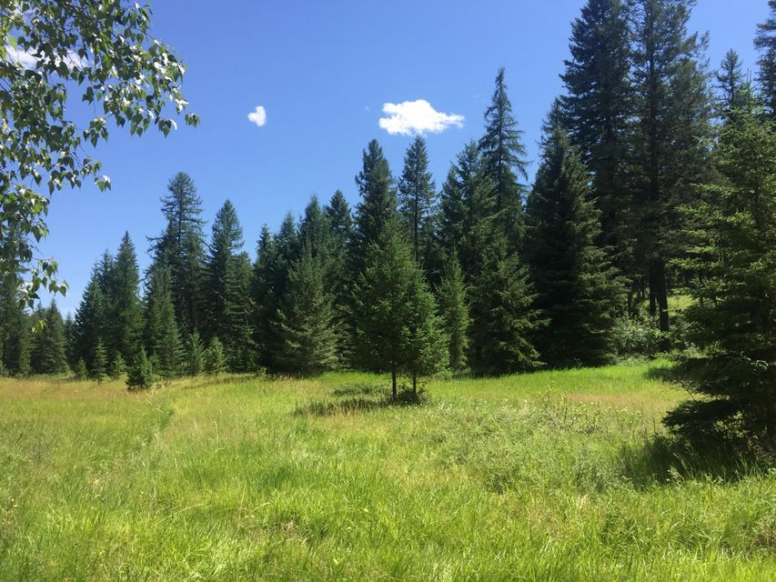 Additional photo for property listing at 1645 Us-93 1645 Us-93 Whitefish, Montana 59937 United States